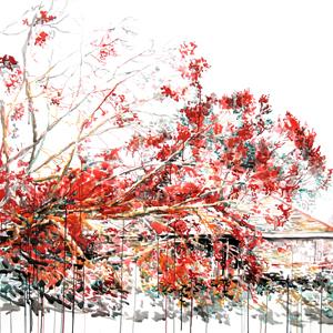 American landscapes 2010 ZEICHNUNG